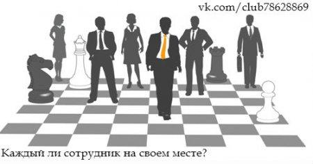 Сотрудник + руководитель = партнеры